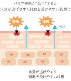 バリア機能が低下した肌のイラスト