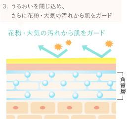3.うるおいを閉じ込め、さらに花粉・大気の汚れから肌をガード