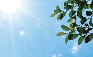 日差しの強い夏イメージ
